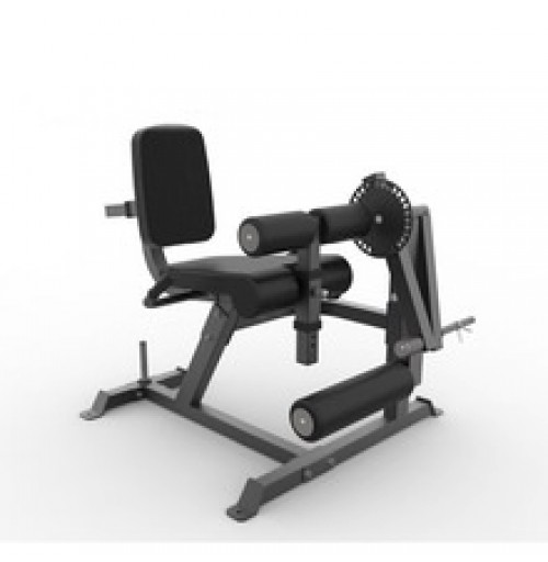 Leg Extension Leg Curl Machine